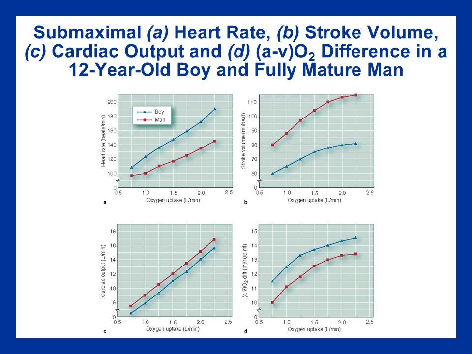 heart rate and stroke volume relationship set