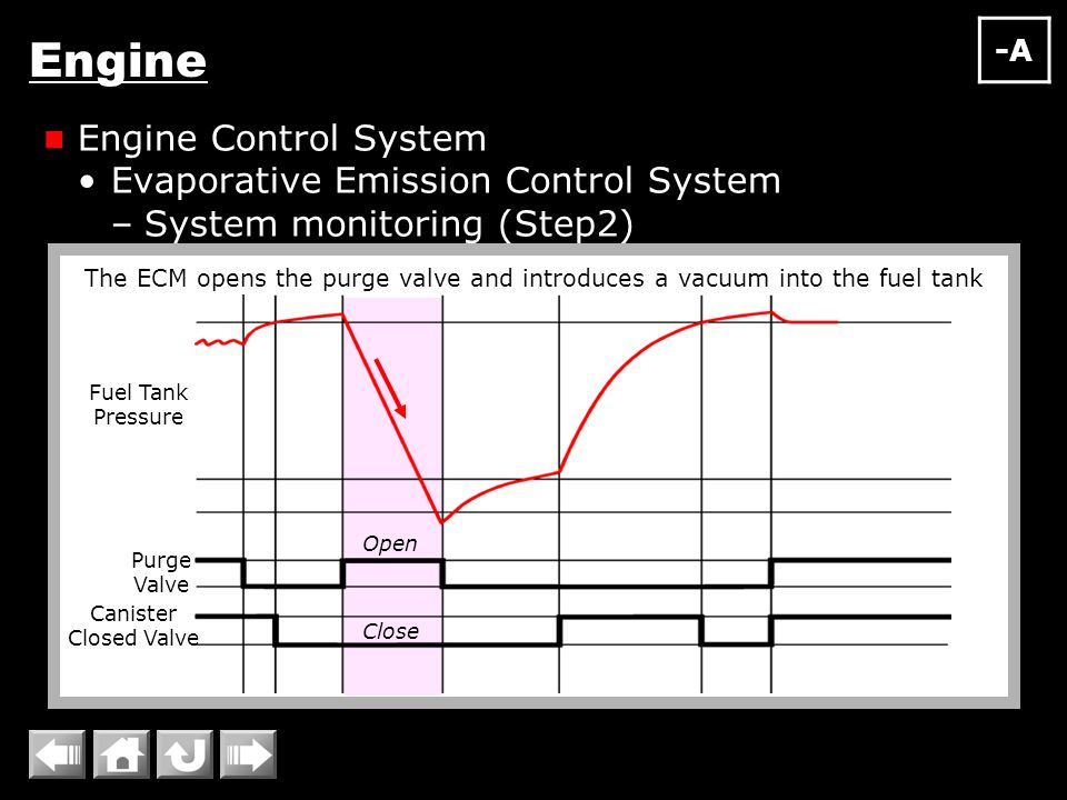 Evaporative Emission Control : Engine overall intake exhaust system fuel