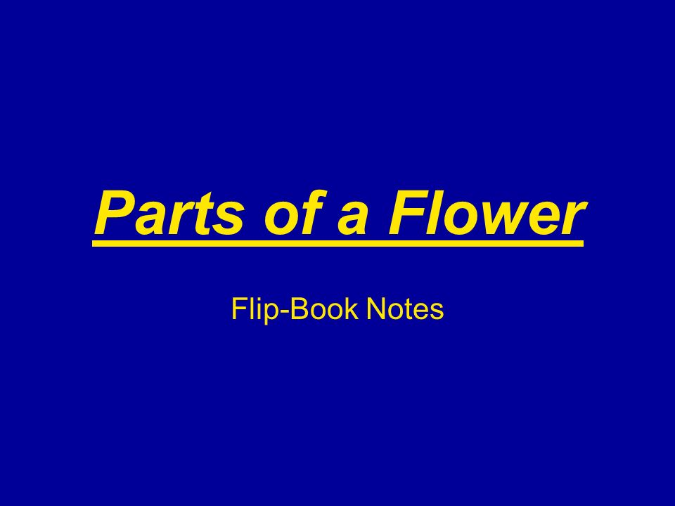 Parts of a Flower Flip-Book Notes