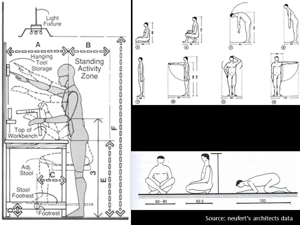 Architecture Design I Anthropometry Ppt Video Online