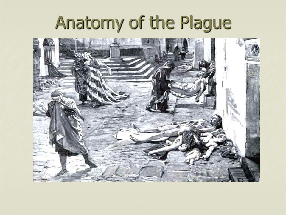 Outbreak anatomy of a plague