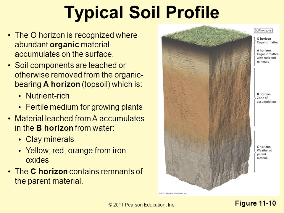 Soil resources chapter ppt video online download for What does soil contain
