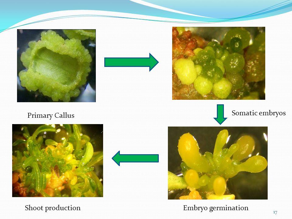 plant tissue culture pdf books free download
