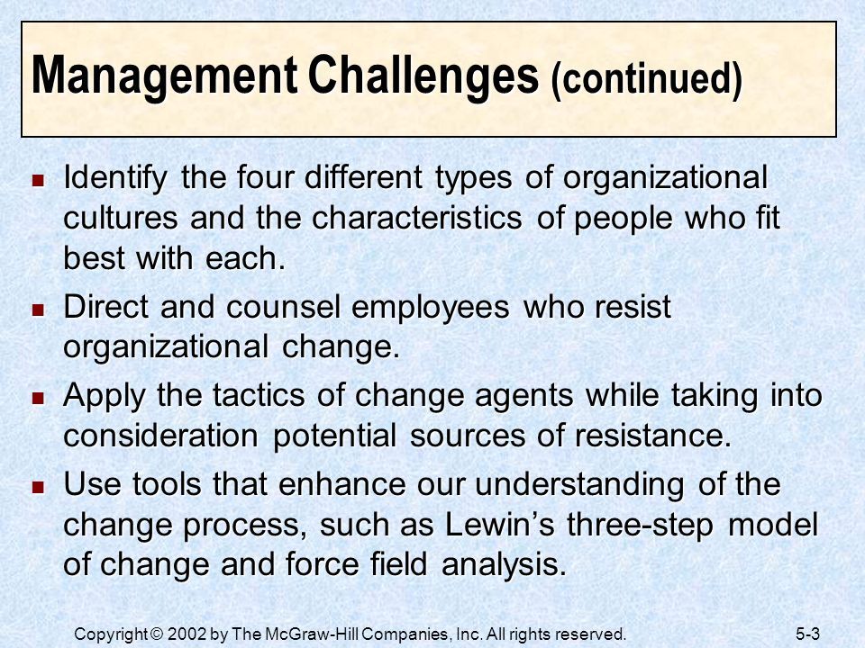Management Challenges (continued)