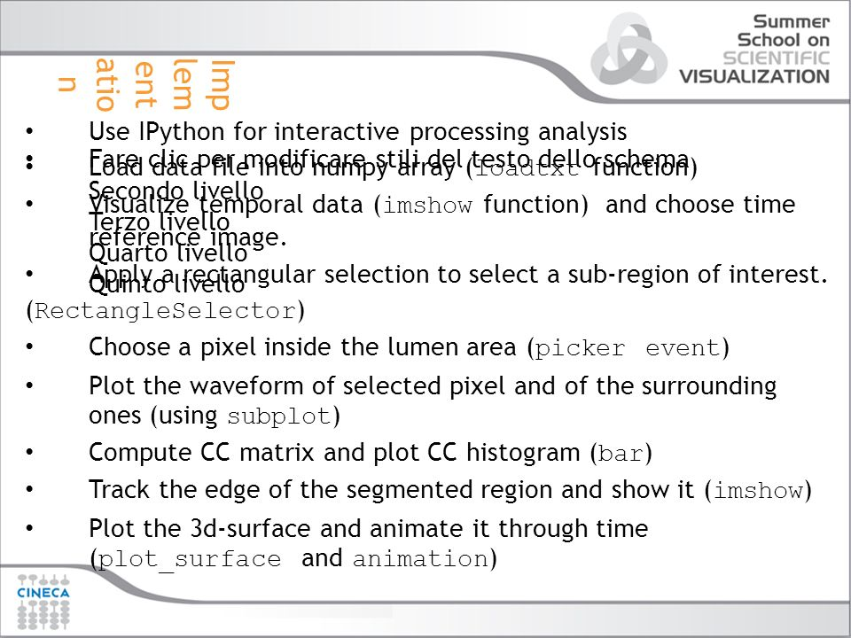 Implementation Use IPython for interactive processing analysis