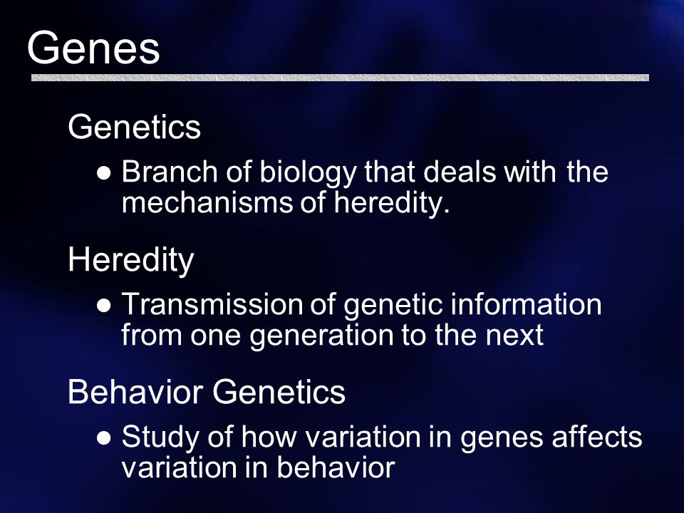 heredity and behavior Ishn04-7 1 the big five personality traits: genetic and inherited determinants of behavior this is the last of a series of six ishn articles on personality factors.