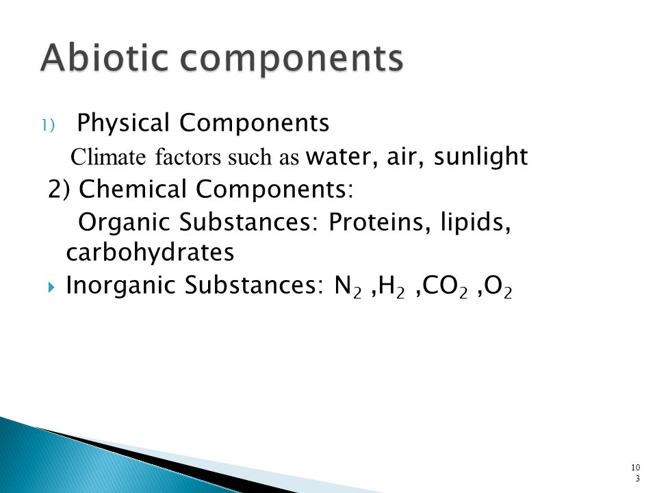 Abiotic components Physical Components