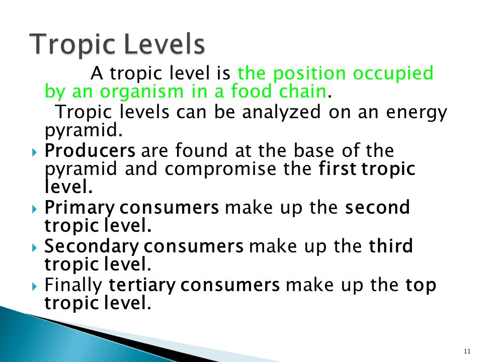 Tropic Levels A tropic level is the position occupied by an organism in a food chain. Tropic levels can be analyzed on an energy pyramid.