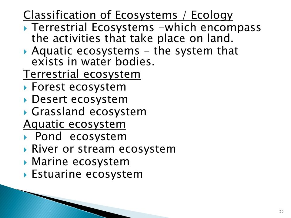 Classification of Ecosystems / Ecology