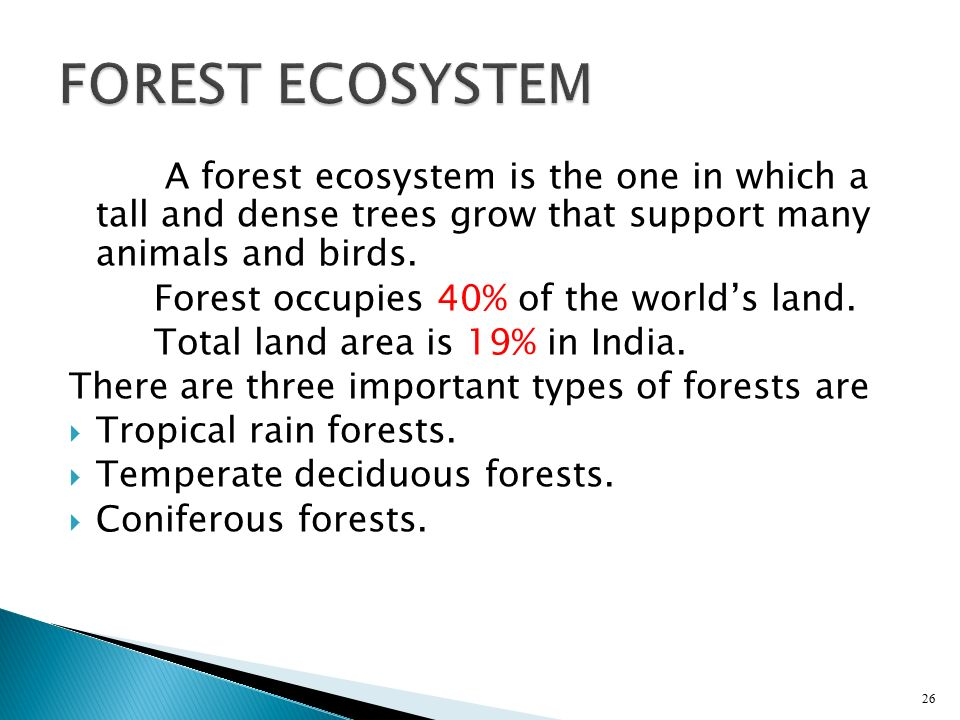 FOREST ECOSYSTEM A forest ecosystem is the one in which a tall and dense trees grow that support many animals and birds.