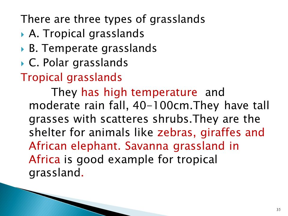 There are three types of grasslands