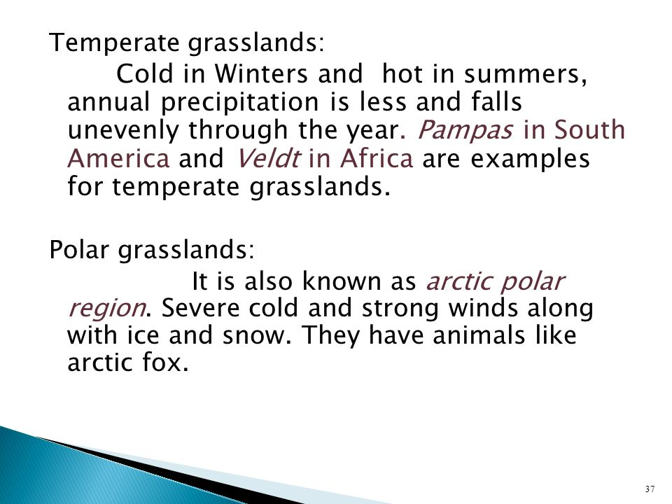 Temperate grasslands: