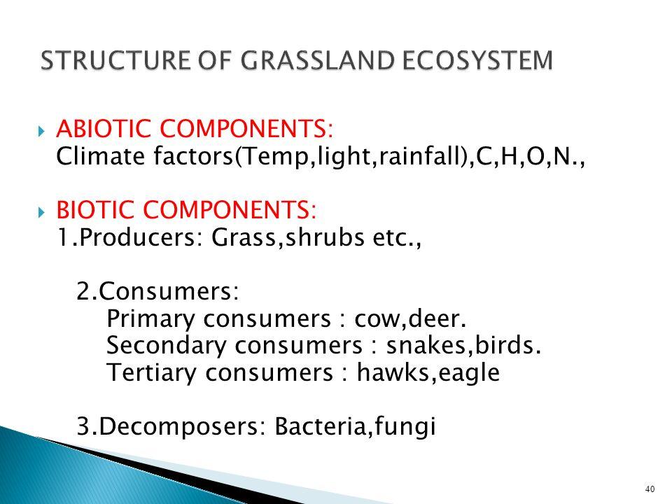 STRUCTURE OF GRASSLAND ECOSYSTEM