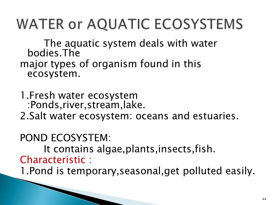 WATER or AQUATIC ECOSYSTEMS