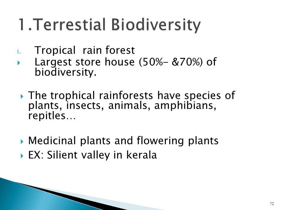 1.Terrestial Biodiversity