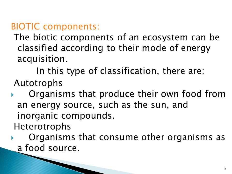 BIOTIC components: The biotic components of an ecosystem can be classified according to their mode of energy acquisition.