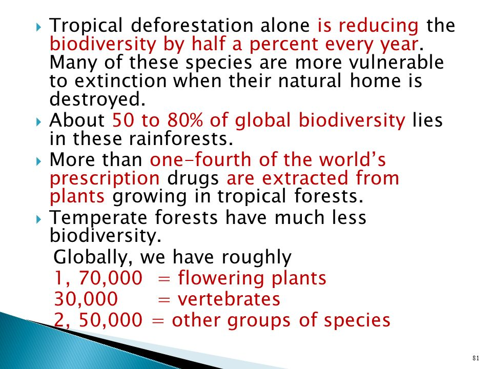 Tropical deforestation alone is reducing the biodiversity by half a percent every year. Many of these species are more vulnerable to extinction when their natural home is destroyed.