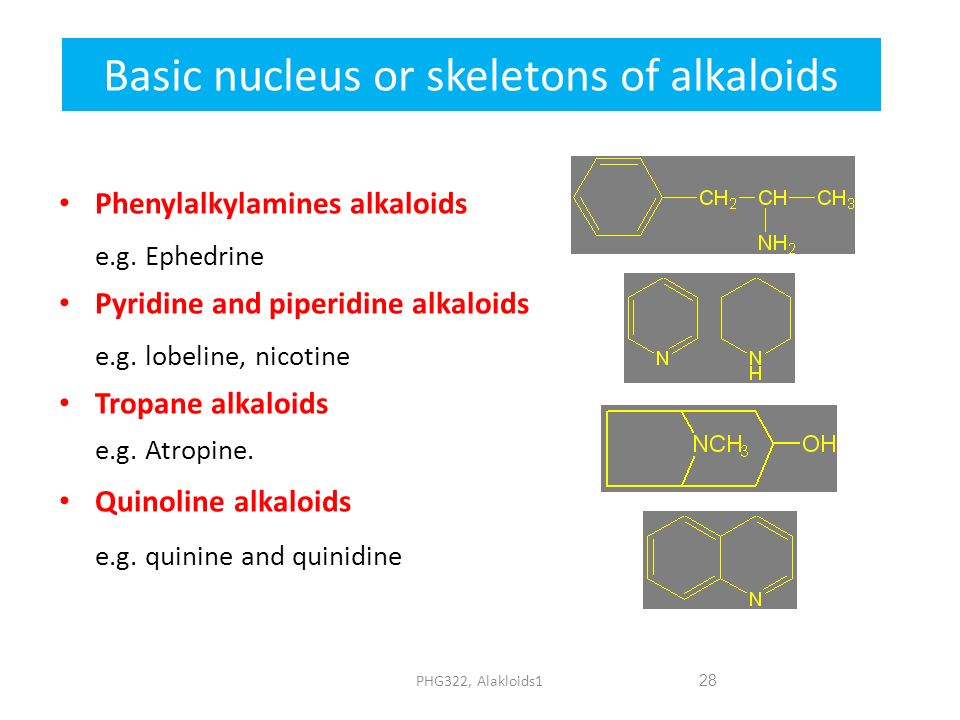 Basic nucleus or skeletons of alkaloids