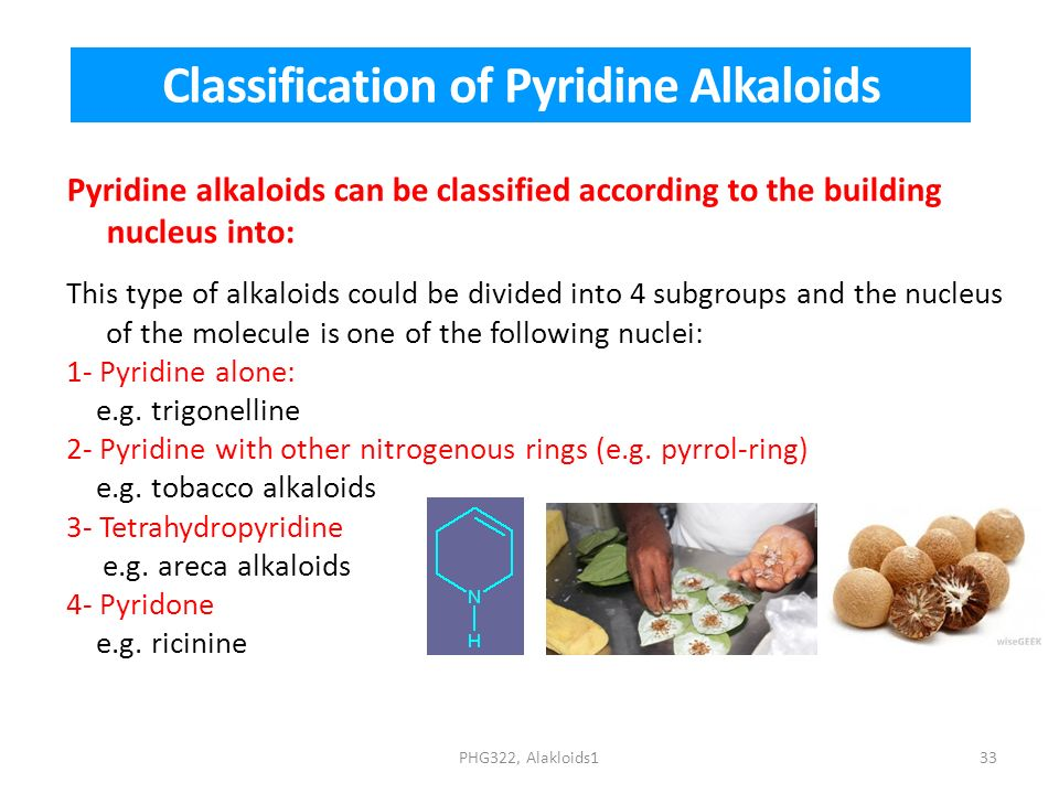 Classification of Pyridine Alkaloids