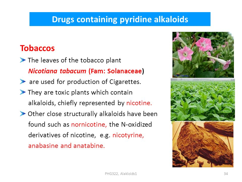 Drugs containing pyridine alkaloids