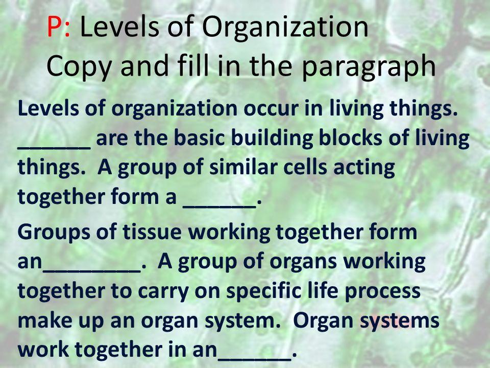 EDUSMART CELLS TO ORGANISMS Obj: We will differentiate between ...