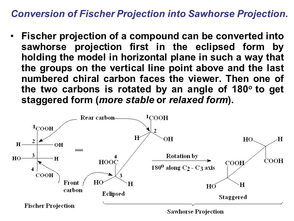 sawhorse projection Sawhorse projection: a representation of molecular structure, from an oblique angle somewhat similar to newman and zig-zag (natta) projections  the sawhorse projection is named after its similar appearance to a carpenter's sawhorse.