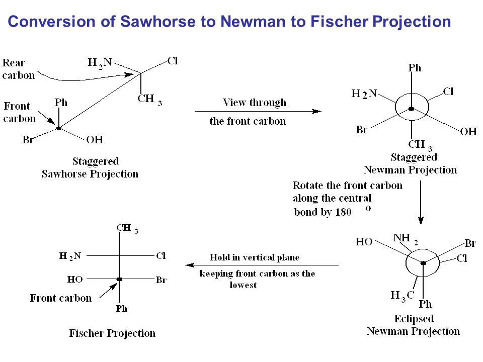 sawhorse projection Using the fischer projection notation, the stereoisomers of 2-methylamino-1-phenylpropanol are drawn in the following manner all displayed in both sawhorse and newman projections the second and fourth conformations (b & d) are dissymmetric, and are in fact enantiomeric structures.