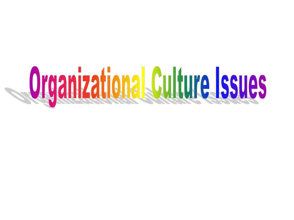 Organizational Culture Issues