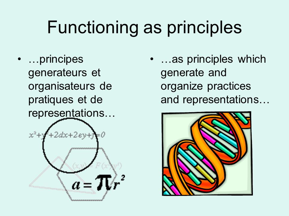 Functioning as principles