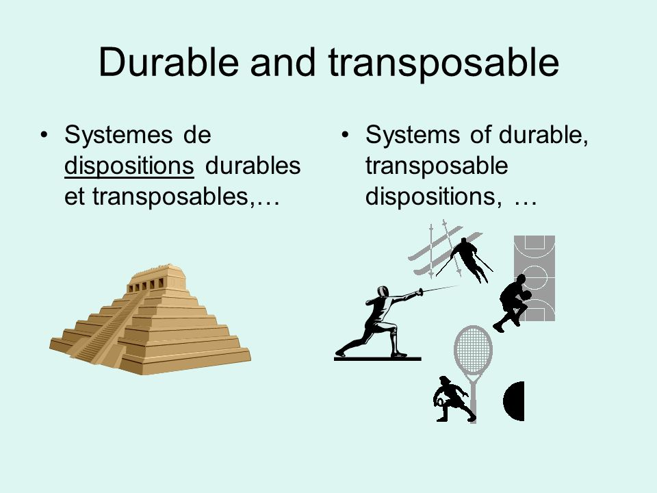 Durable and transposable
