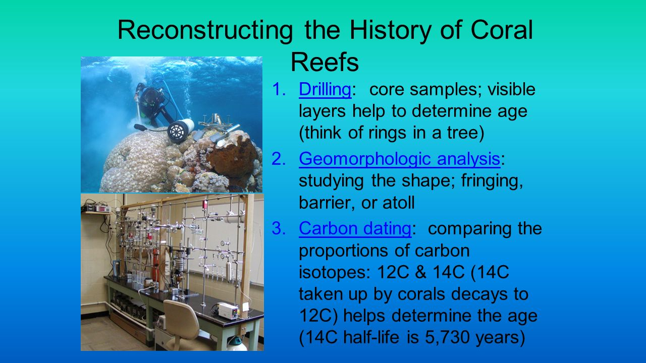 radiocarbon dating corals