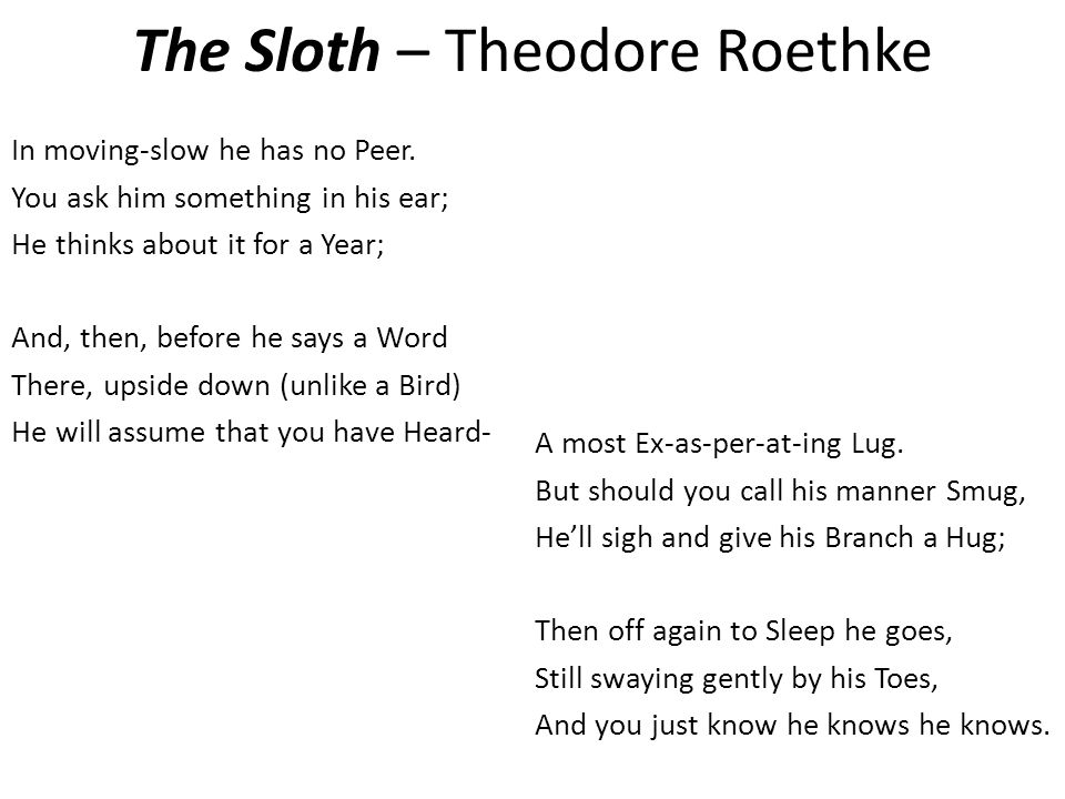 the sloth theodore roethke In moving slow he has no peer you ask him something in his ear, he thinks about it for a year and, then, before he says a word there.