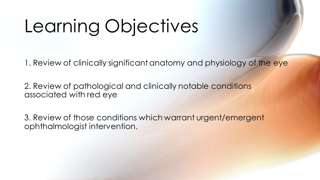 Bonito Anatomy And Physiology Learning Objectives Festooning ...