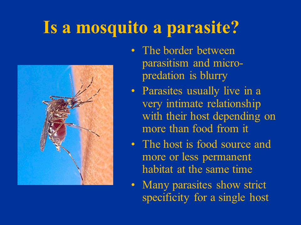 explain the relationship between parasites and hosts