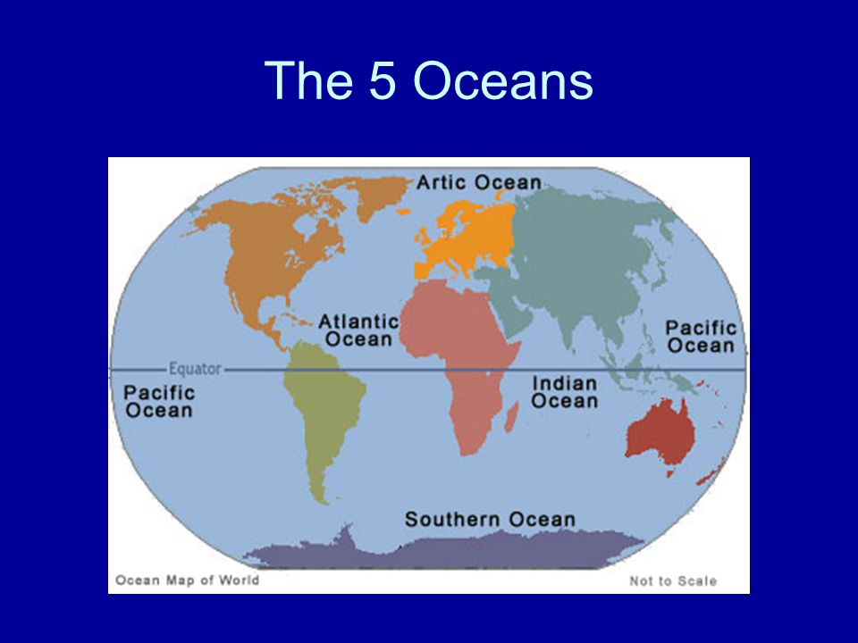 The Ocean. - ppt video online download