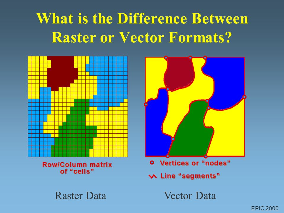 Outstanding difference between raster and vector in gis pictures