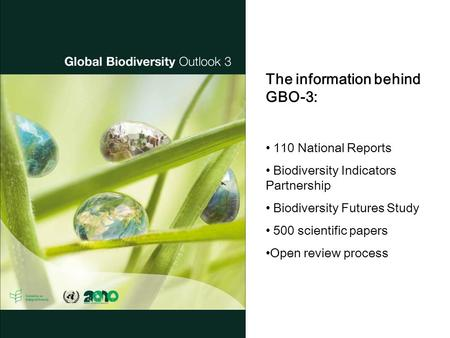 The information behind GBO-3: