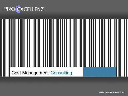 Www.procexcellenz.com Cost Management Consulting.