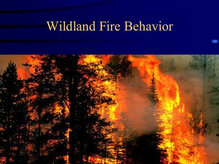 Wildland Fire Behavior
