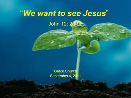 """We want to see Jesus"" John 12: 20-26"