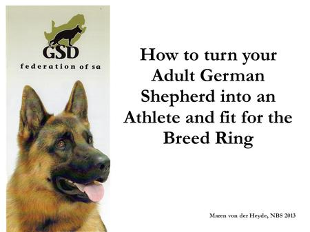 How to turn your Adult German Shepherd into an Athlete and fit for the Breed Ring Maren von der Heyde, NBS 2013.