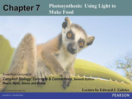 Photosynthesis: Using Light to Make Food