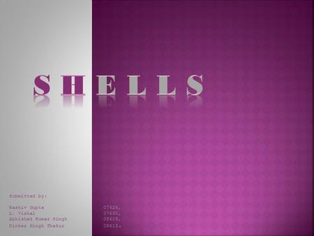 S H E L L S Submitted by: Rashiv Gupta 07628, L. Vishal 07630,