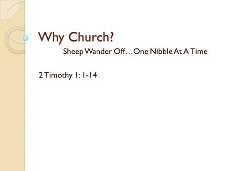 Sheep Wander Off…One Nibble At A Time 2 Timothy 1: 1-14