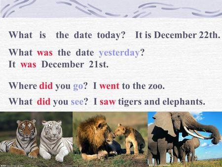 What   is    the  date  today?    It is December 22th.