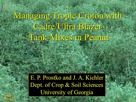 Managing Tropic Croton with Cadre/Ultra Blazer Tank-Mixes in Peanut E. P. Prostko and J. A. Kichler Dept. of Crop & Soil Sciences University of Georgia.