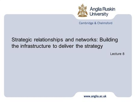 Strategic relationships and networks: Building the infrastructure to deliver the strategy Lecture 8.