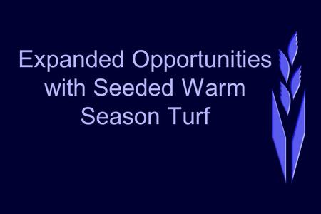 Expanded Opportunities with Seeded Warm Season Turf.