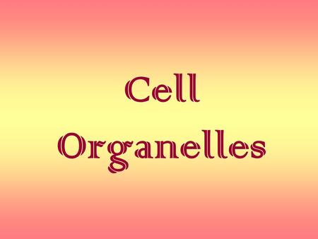 Cell Organelles.