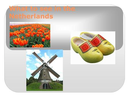 What to see in the Netherlands. De Lindenborg This is our school. There are about 1100 students. Each lesson lasts 50 minutes and everyday we have about.